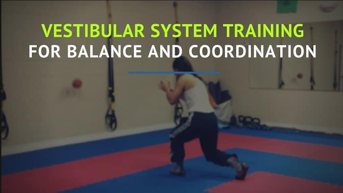bodycoach/Vestibular-System-Training-2.jpg